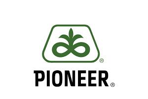 Pioneer Hybrid